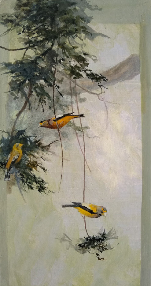 "Evening Grosbeaks at Yuba Pass 30"" x 15"" acrylic on wood panel"