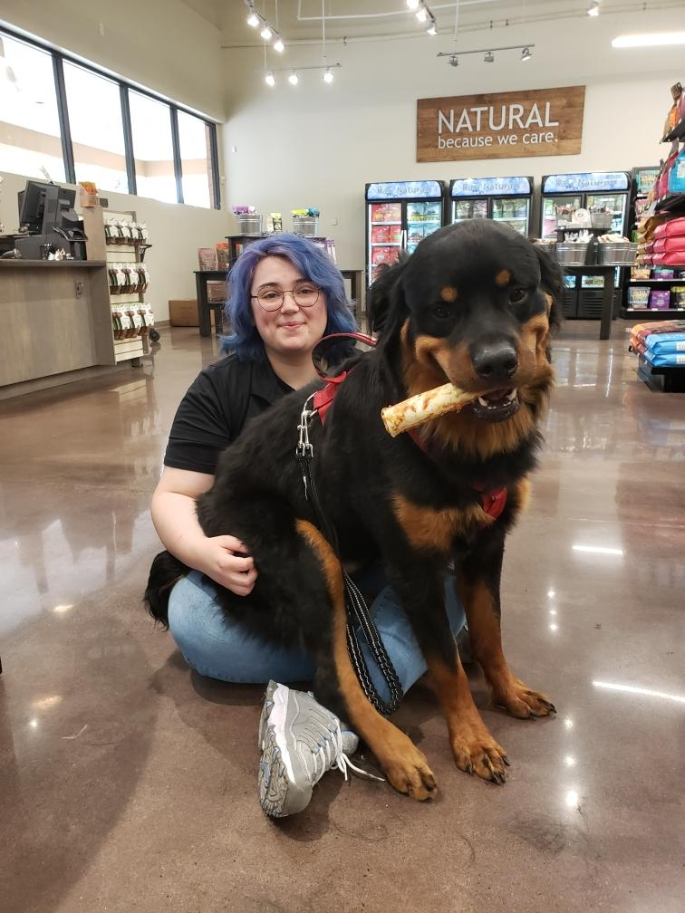 Ryker the 110 pound Rottweiler. He was reactive to dogs and we worked with him to the point where he got so much better that we could take him into a Pet Smart for socialization exercises.