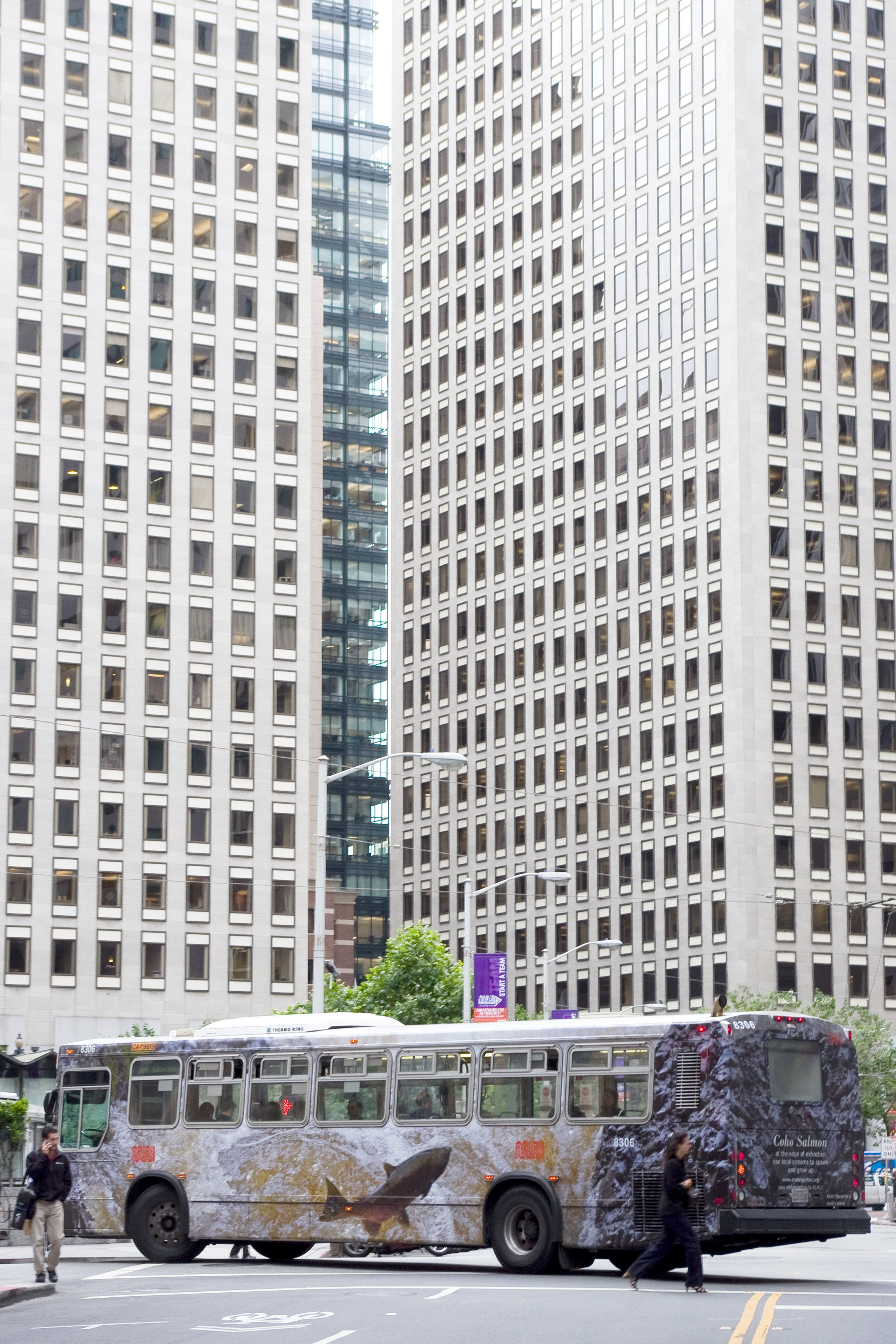 Salmonbus Downtown 12in.jpg