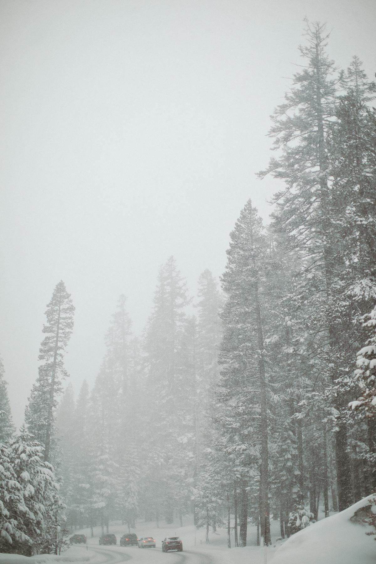 tahoe-0027.jpg
