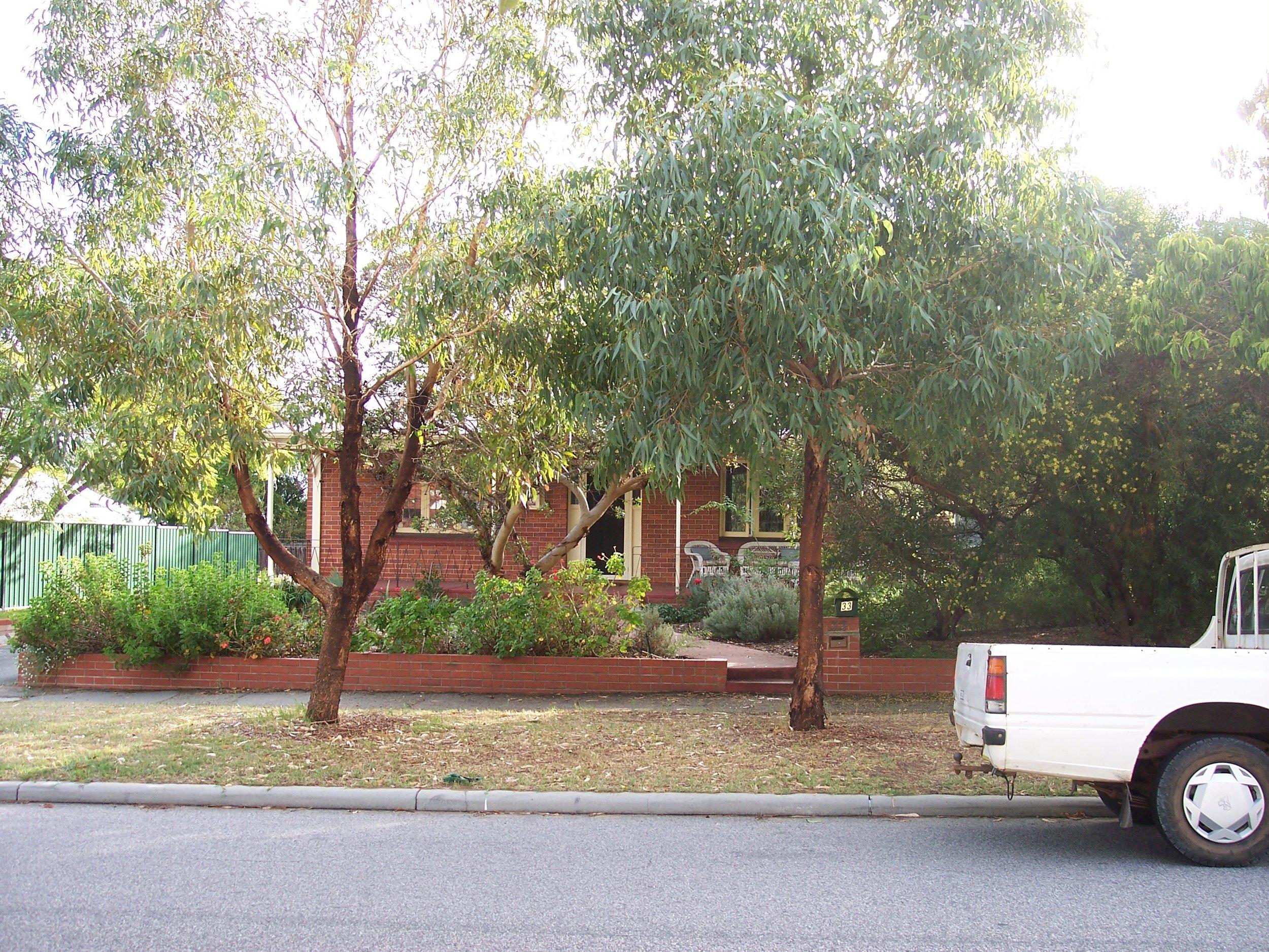 24-4-06 View W 33 Oakover St.jpg