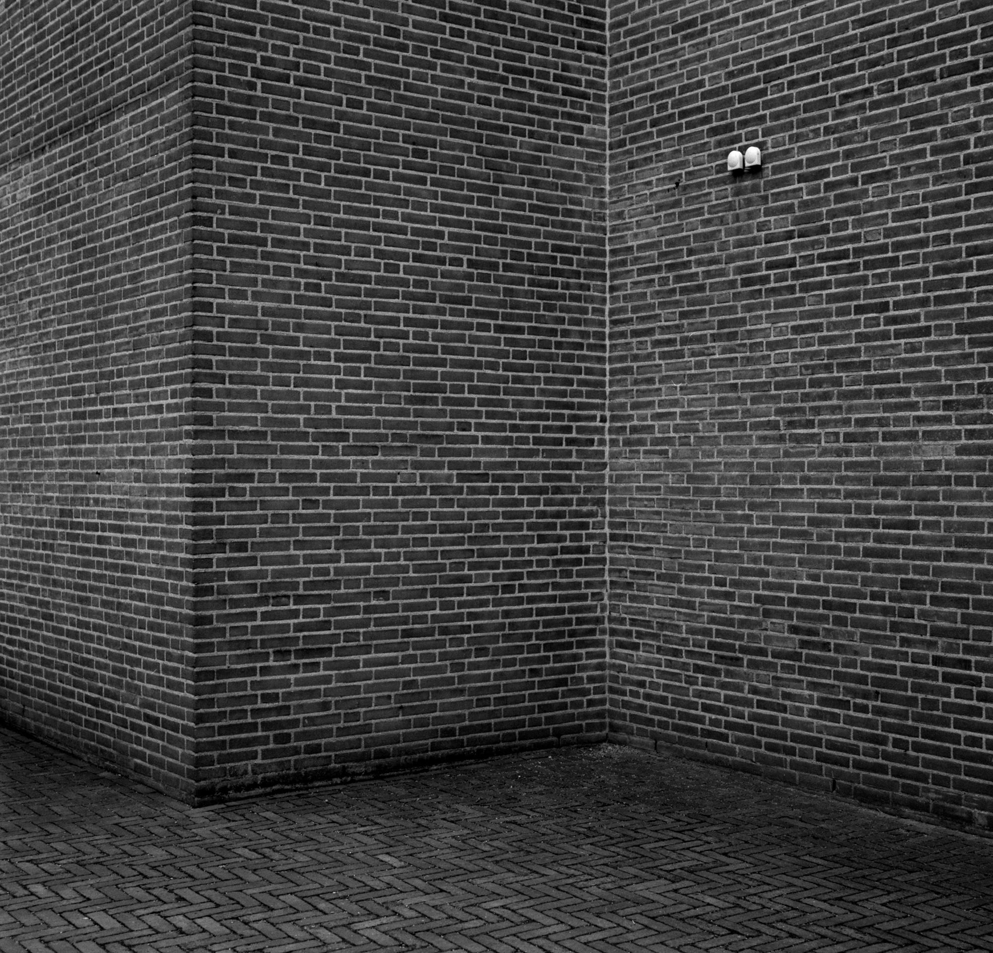 Mate - Selected Walls-5.jpg