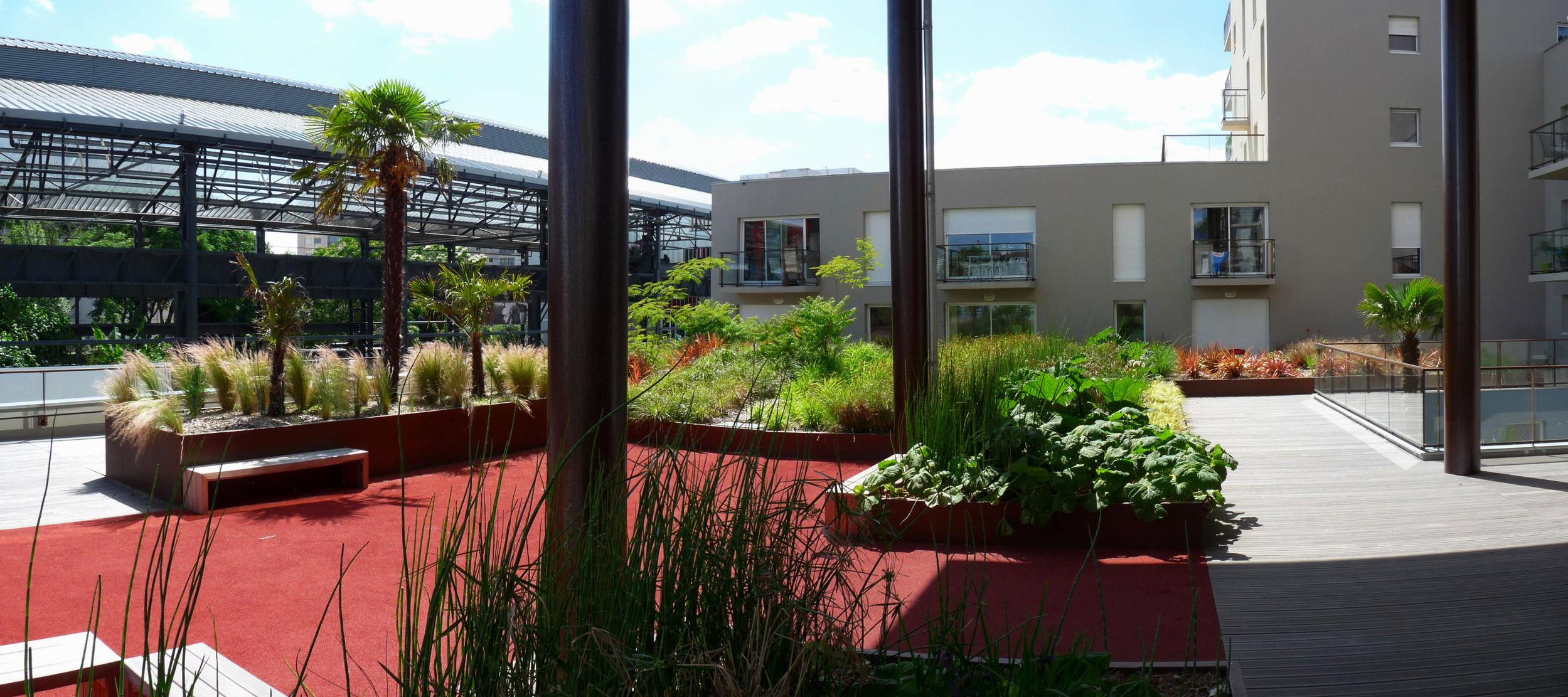 Un jardin sur les toits cadrée par la végétation