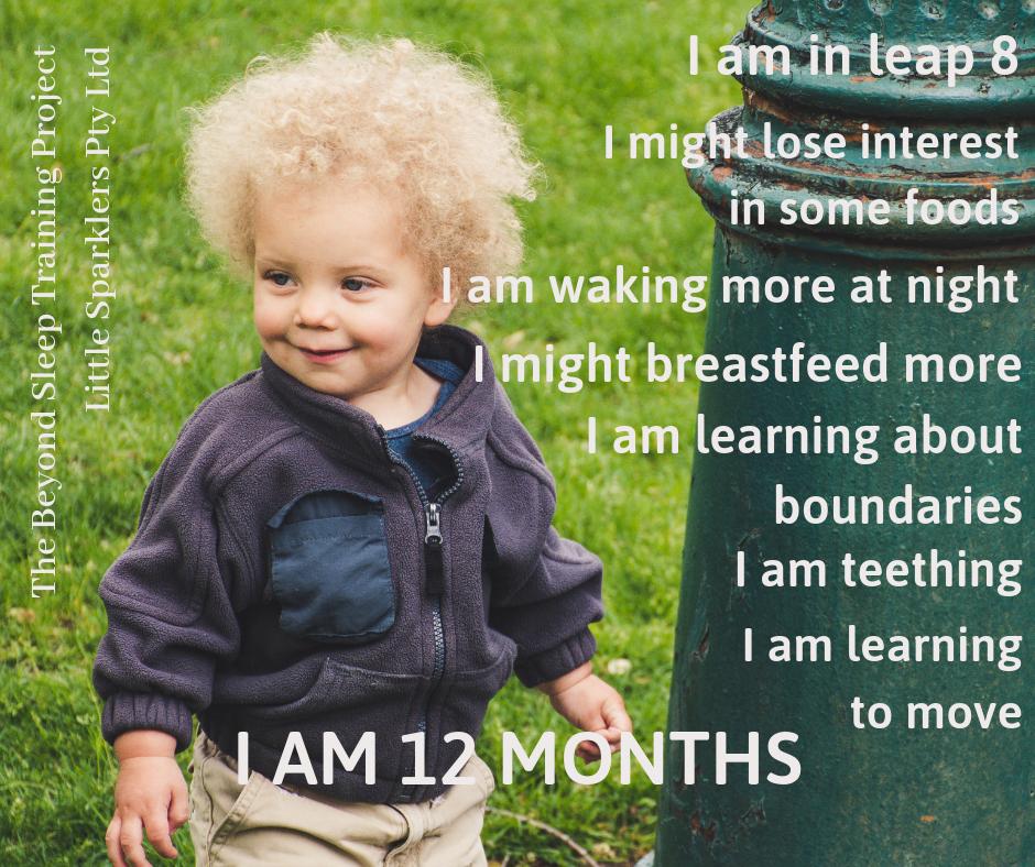 I AM 12 MONTHS.png