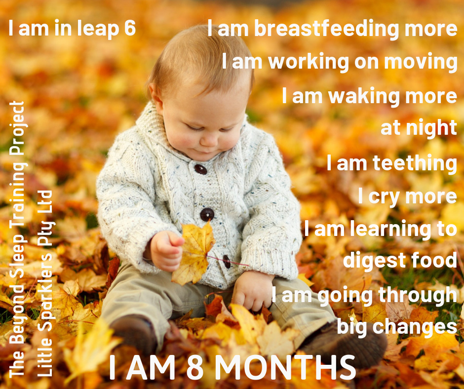 I am 8 months old.png