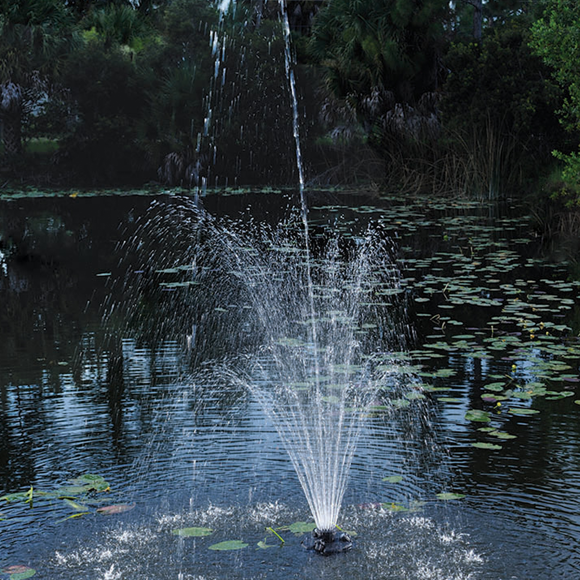 Floating Fountain With Lights Oase Living Water