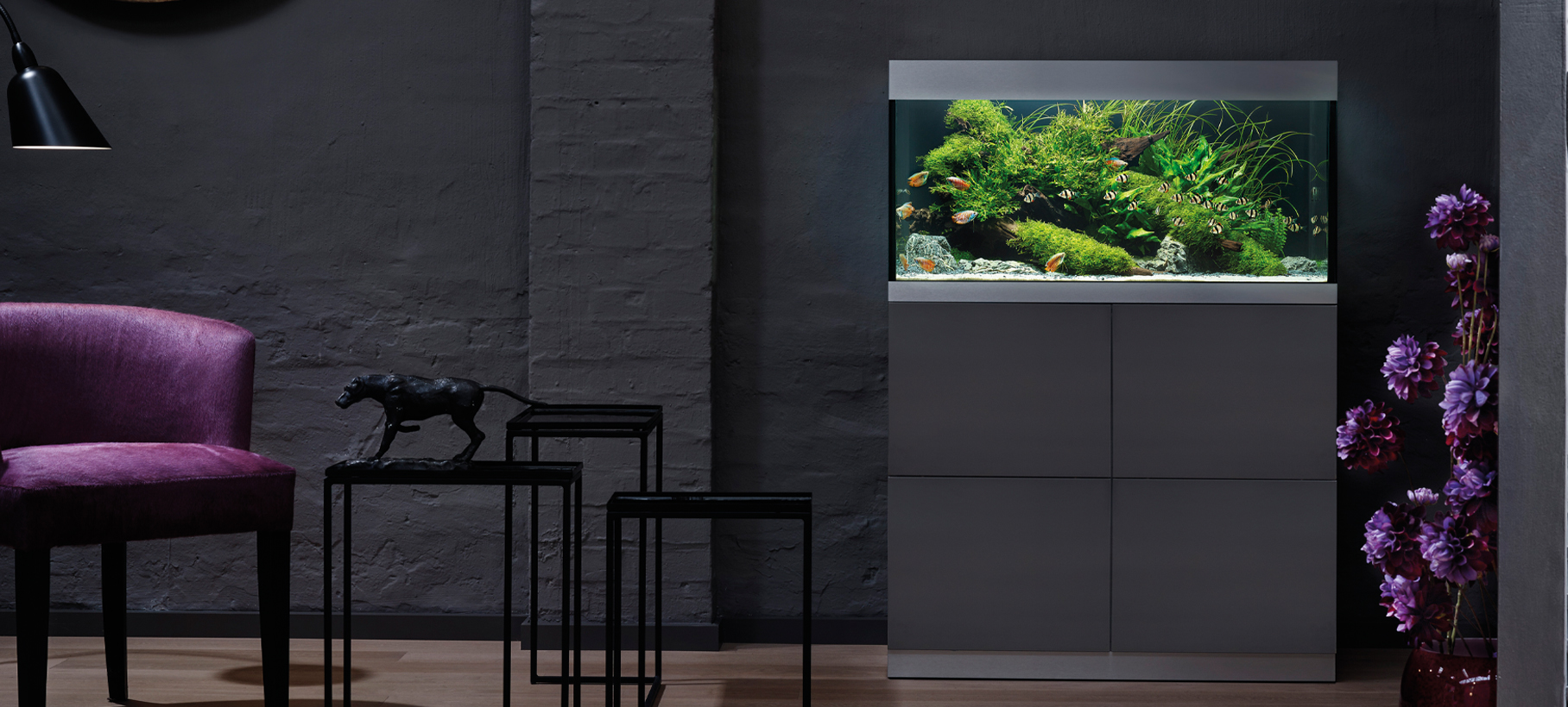aquarium6.jpg