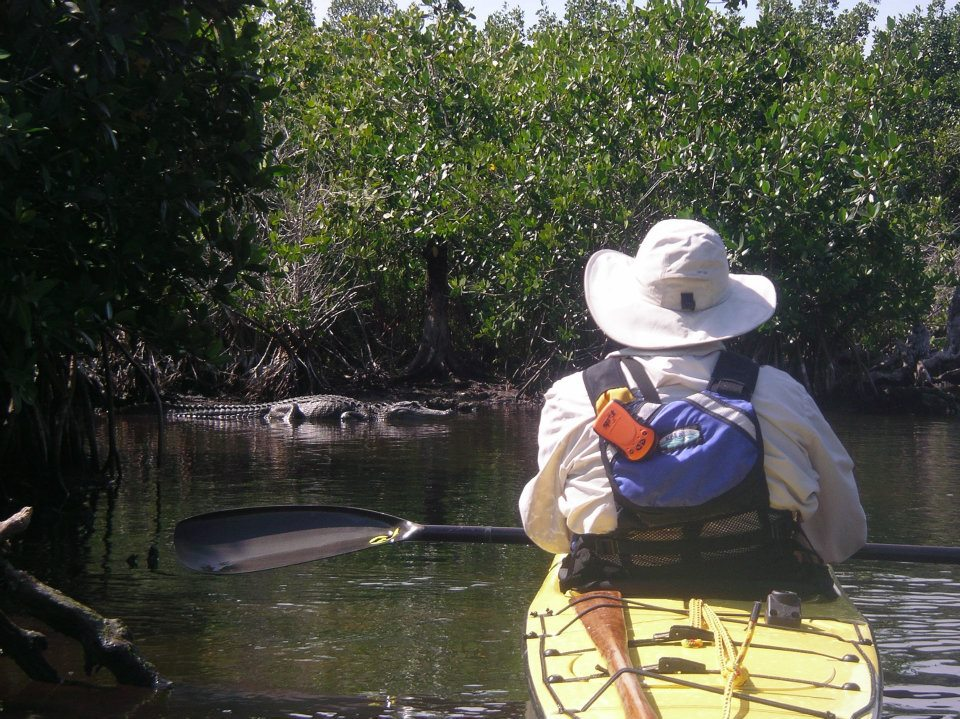 eVERGLADES - TEN THOUSAND ISLANDSFully-outfitted kayak camping trips from 3 to 8 days, including the 100-mile Wilderness Waterway. We are the ONLY outfitter offering kayak expeditions from both Flamingo and Everglades City/Ten Thousand Islands, giving you options to delve deeper in the Everglades than anyone else.November - April