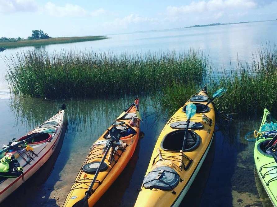 SCHOONER BAY - GUIDED KAYAK TOURFOUR HOURS - 85.00Four hour kayak tour. Prices include kayaks and gear. 10% discount if you bring your own.