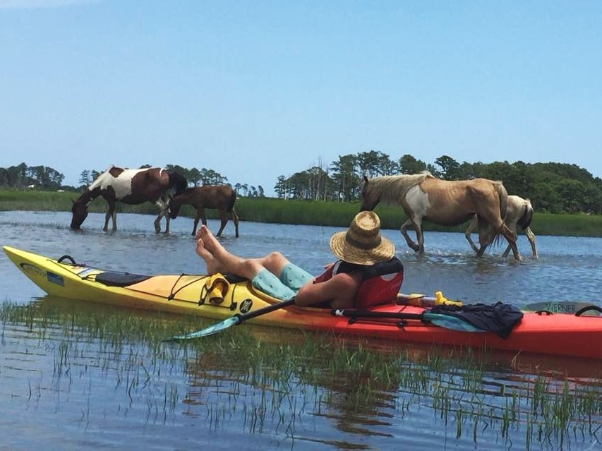 CHINCOTEAGUE PADDLE WITH PONIES - GUIDED KAYAK TOURSIX HOURS - 125.009 am - 3 pm. Daily guided kayak trip includes lunch. Other meals and lodging are on your own. Prices include kayaks and gear. 10% discount if you bring your own.