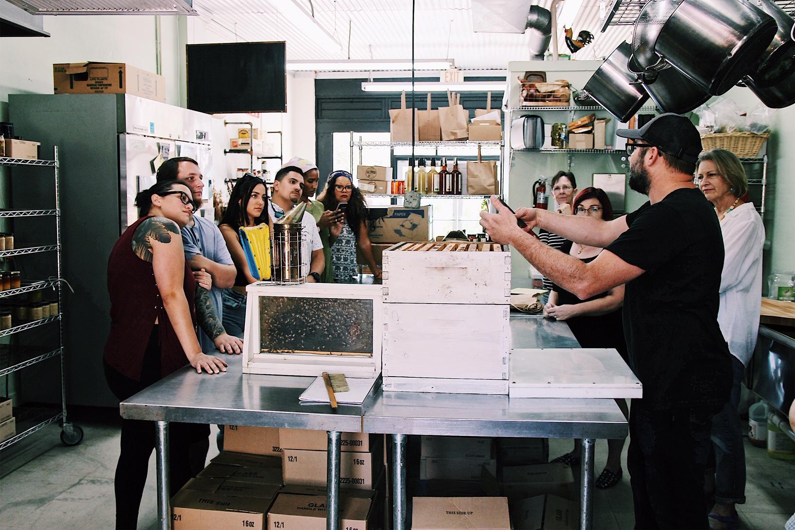 Beekeeping Workshops -