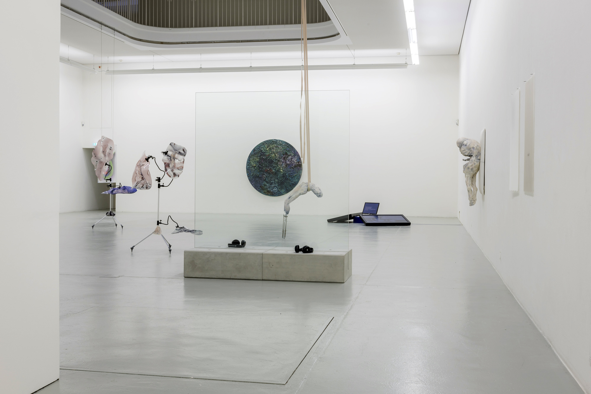 Immortalism-at-Kunstverein-Freiburg-5.jpg