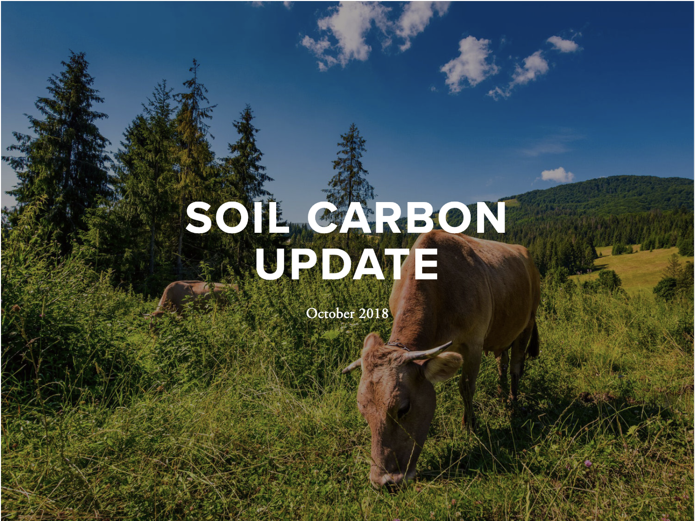 October 2018 Update - This update includes features on reports and studies, conferences, news coverage, emerging efforts, jobs and volunteer opportunities.