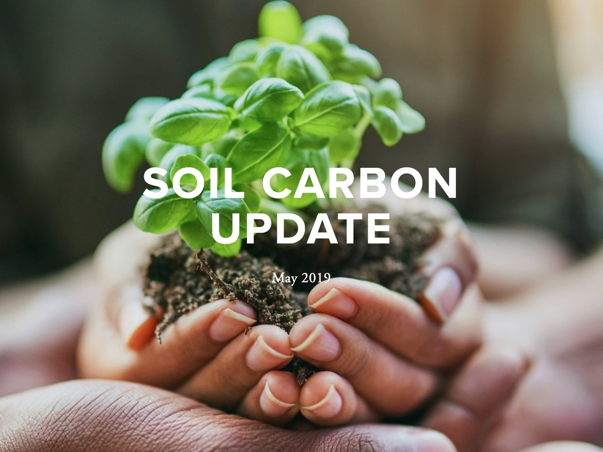 May 2019 UPDATE - This update includes features on new SCS initiatives, research developments, conferences, policy developments, and media and communications.