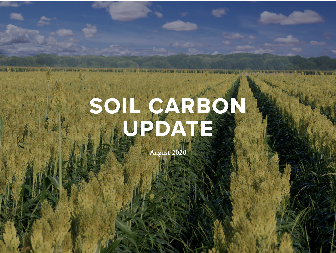 August 2019 UPDATE - This update includes features on soil champions, research developments, Programs and tools for farmers, new initiatives, corporate leadership, policy updates recent media, and conferences.