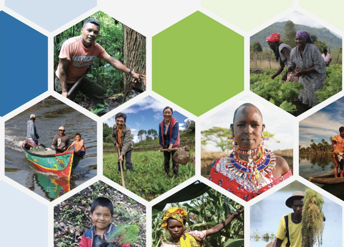 The Equator Initiative - The Equator Initiative brings together the United Nations, governments, civil society, businesses and grassroots organizations to recognize and advance local sustainable development solutions for people, nature and resilient communities.