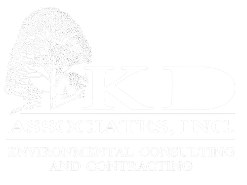 kd-associates-logo-white.png