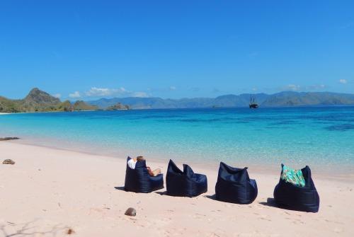 Tiger.Blue.Beach.Relax.jpg