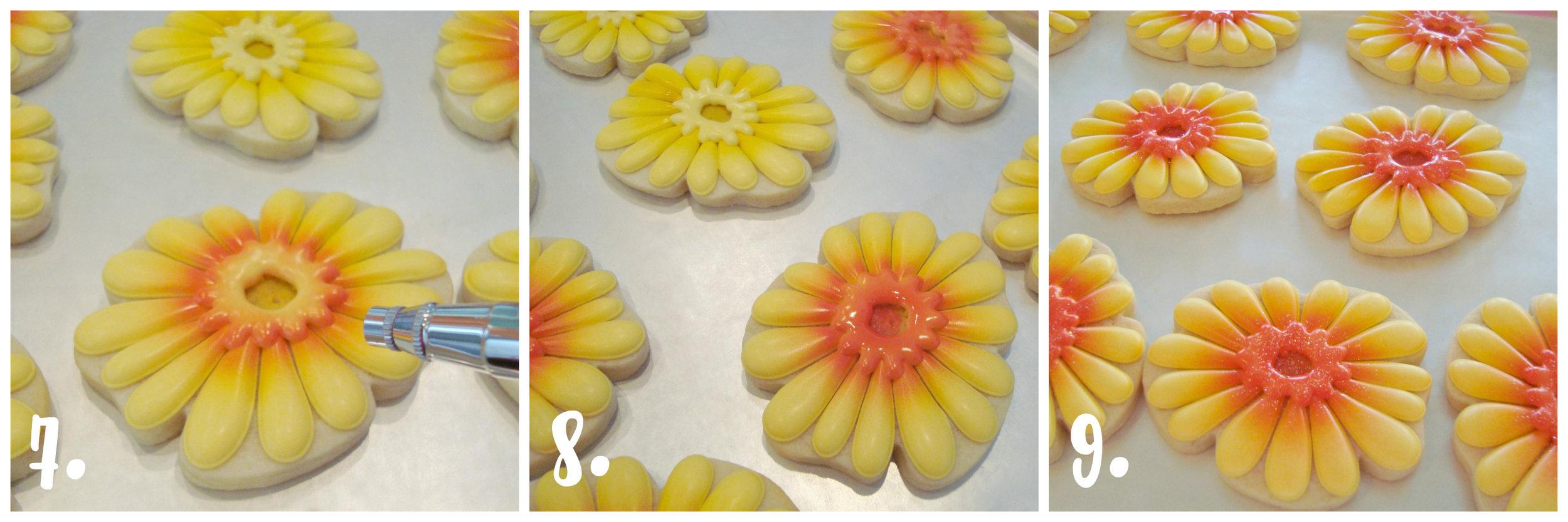 blyss daisies 4.jpg