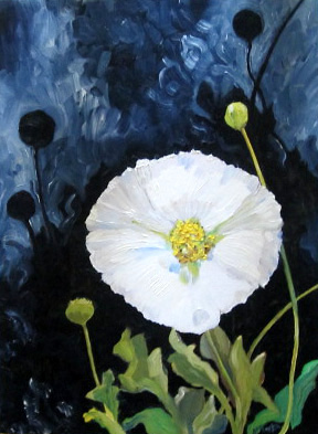 Beauty in the Deficit - White Poppy - 2015