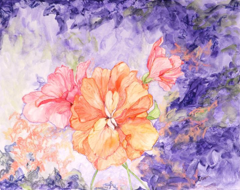 Hibiscus shade.jpg