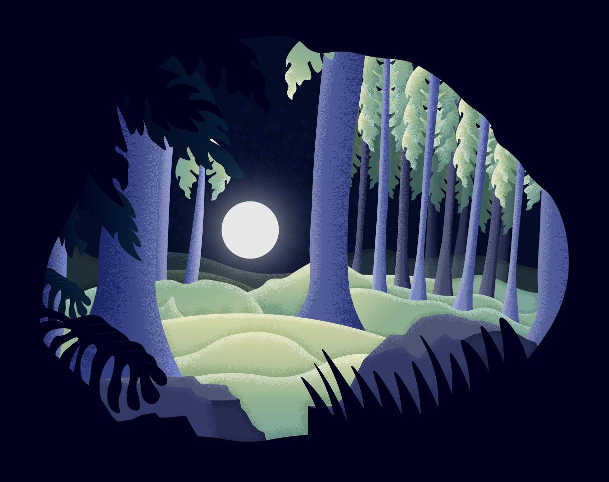 Forest_landscape copy.jpg