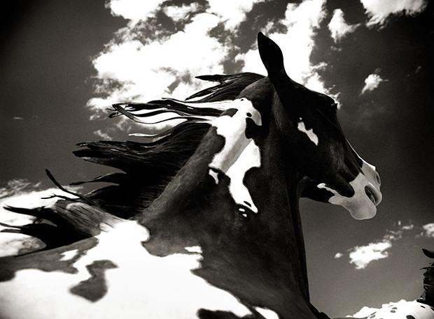 """BENJAMIN HELLER, """"CLOUD HORSE"""", 2014"""