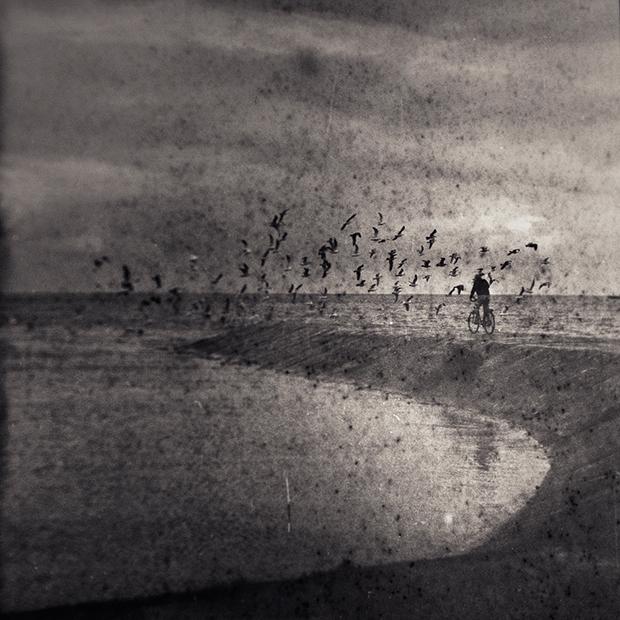 """MINDAUGAS GABRENAS, """"BIRDY"""", 2011"""