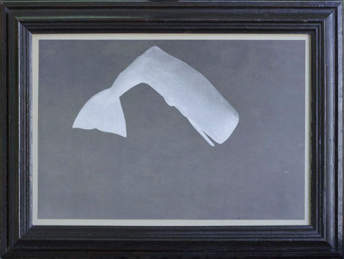 THE WHITE WHALE, 2013  PIGMENT PRINT ONE OF A KIND HANDMADE ANTIQUE FRAME