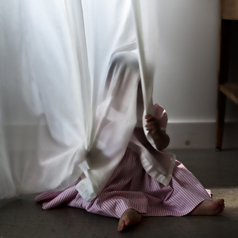 SCOUT AND THE CURTAIN, 2012  C-PRINT