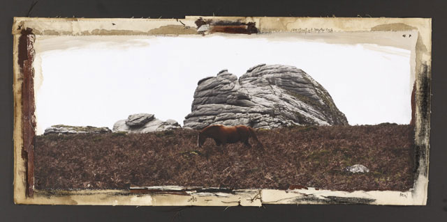 CHESTNUT AT HAYTOR ROCK, 2010   ONE OF A KIND PHOTOGRAPH ON CANVAS WITH MIXED MEDIA