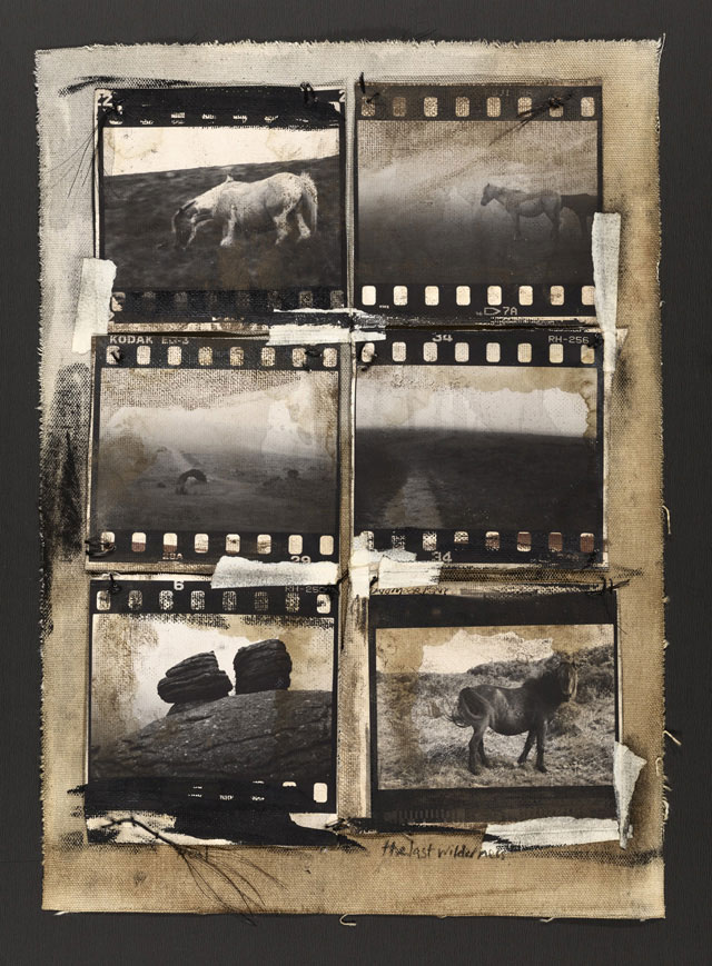 THE LAST WILDERNESS, 2011   ONE OF A KIND PHOTOGRAPH ON CANVAS WITH MIXED MEDIA