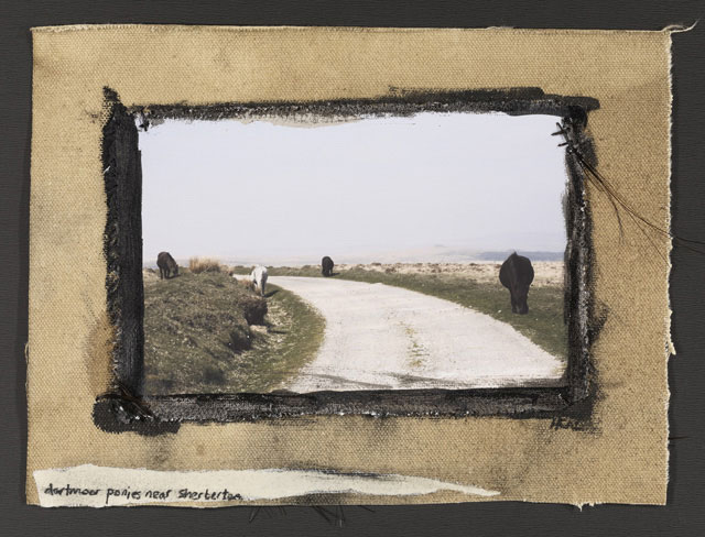 GRAZING PONIES NEAR SHERBERTON, 2011   ONE OF A KIND PHOTOGRAPH ON CANVAS WITH MIXED MEDIA