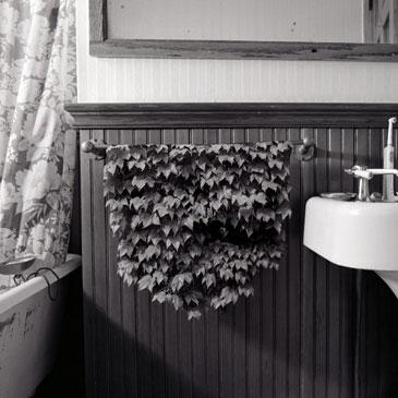 BATHROOM, 2006  Photographer: Keith Sharp TONED SILVER GLATIN