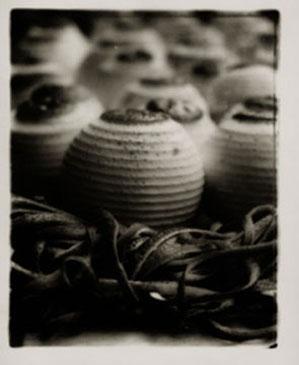 SWEET ORANGES, HAVANA, 2000  Photographer: Ron Tarver TONED SILVER GELATIN
