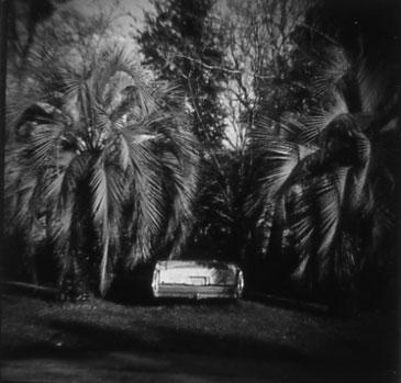 MICANOPY, FLORIDA 1995   TONED SILVER GELATIN