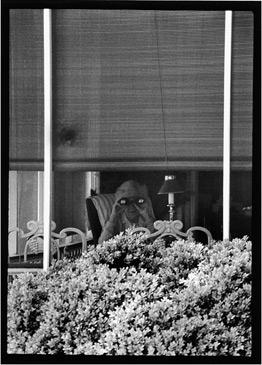 PORCH, 1990   SILVER GELATIN