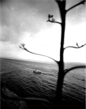 HYDRA, 1996   SILVER GELATIN