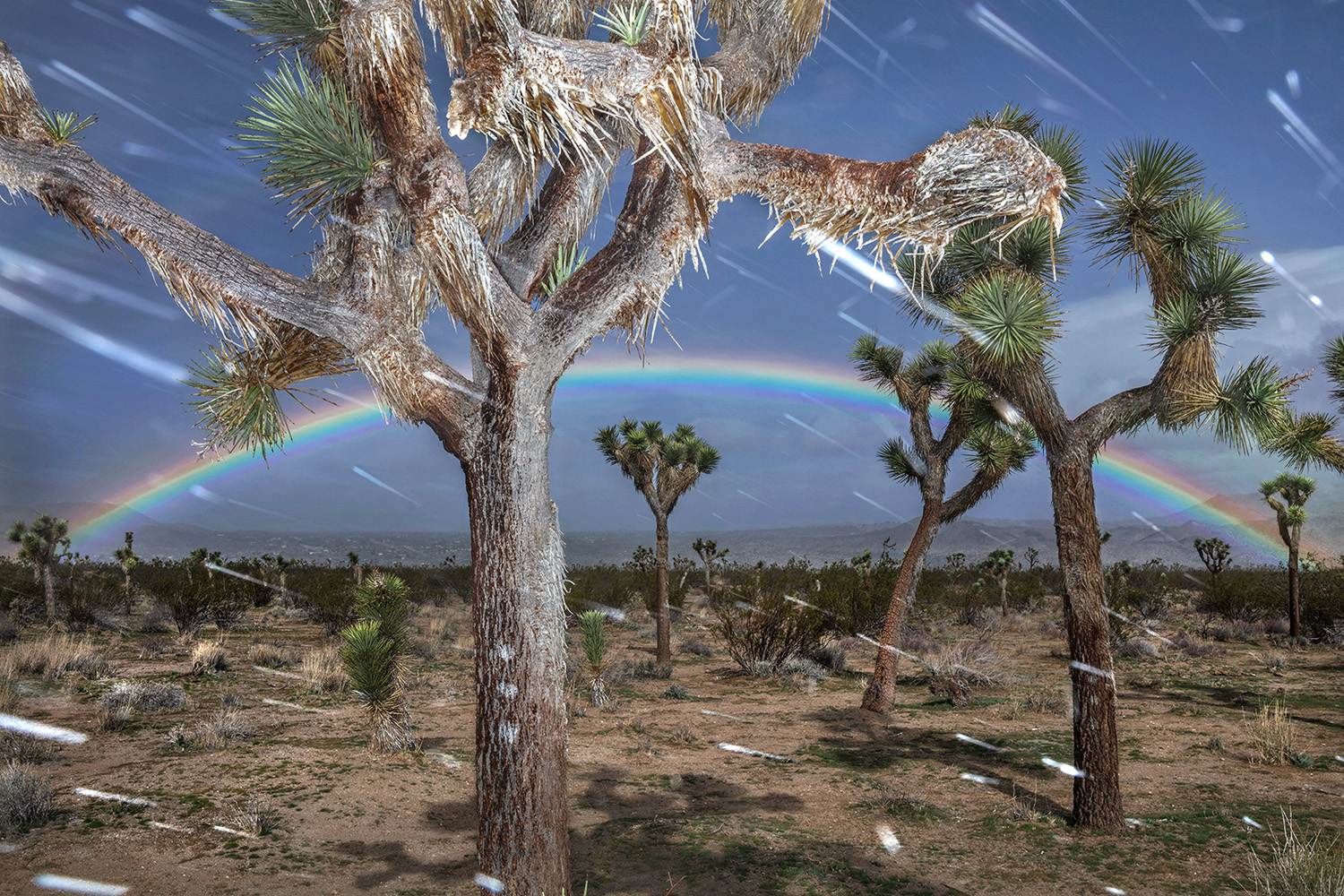 THOMAS ALLEMAN OTHER DESERT CITIES, 2018  ARCHIVAL PIGMENT PRINT