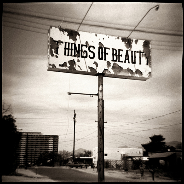 GORDON STETTINIUS THINGS OF BEAUTY, 1994  SEPIA TONED SILVER GELATIN