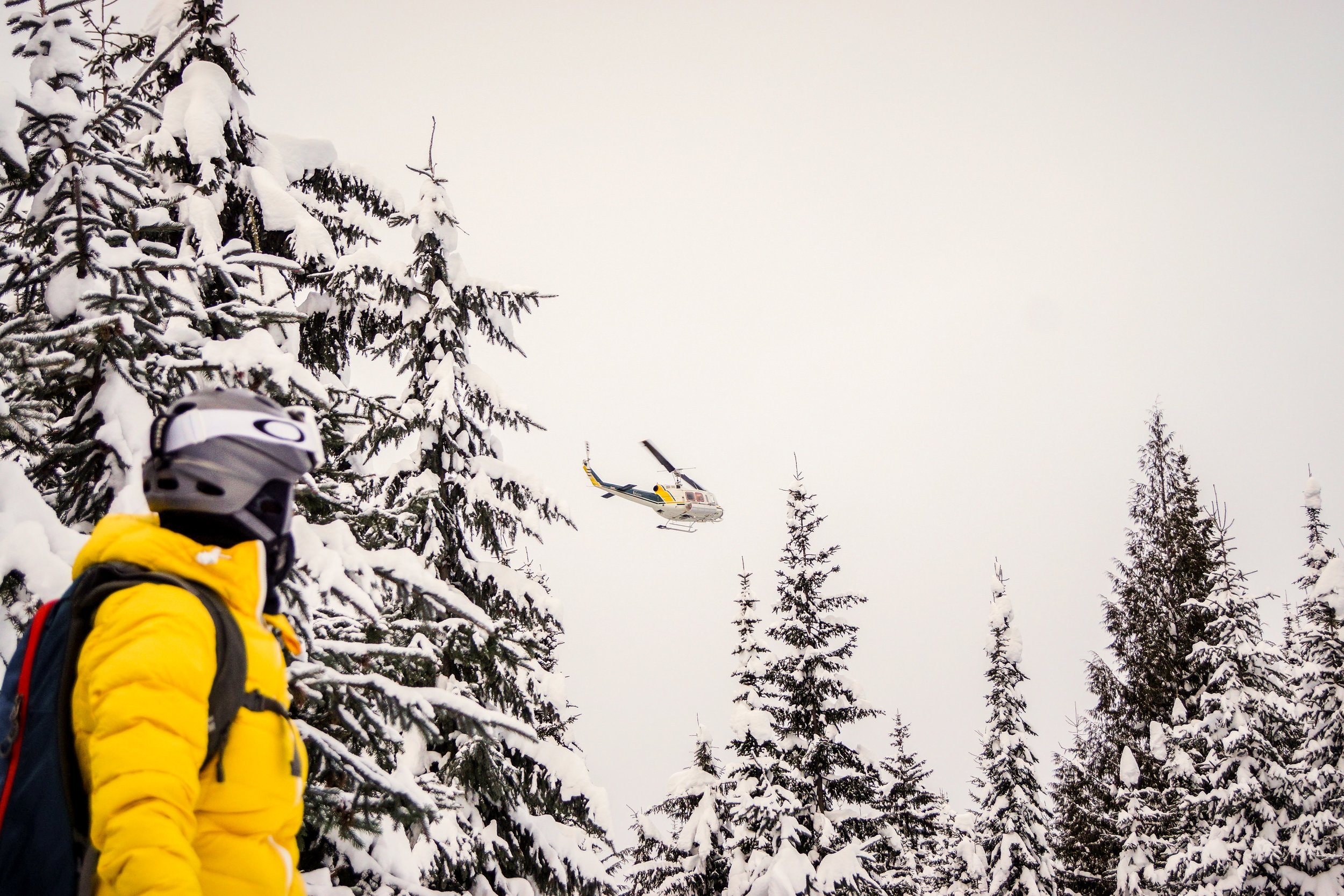 Helicopter Skiing Photo
