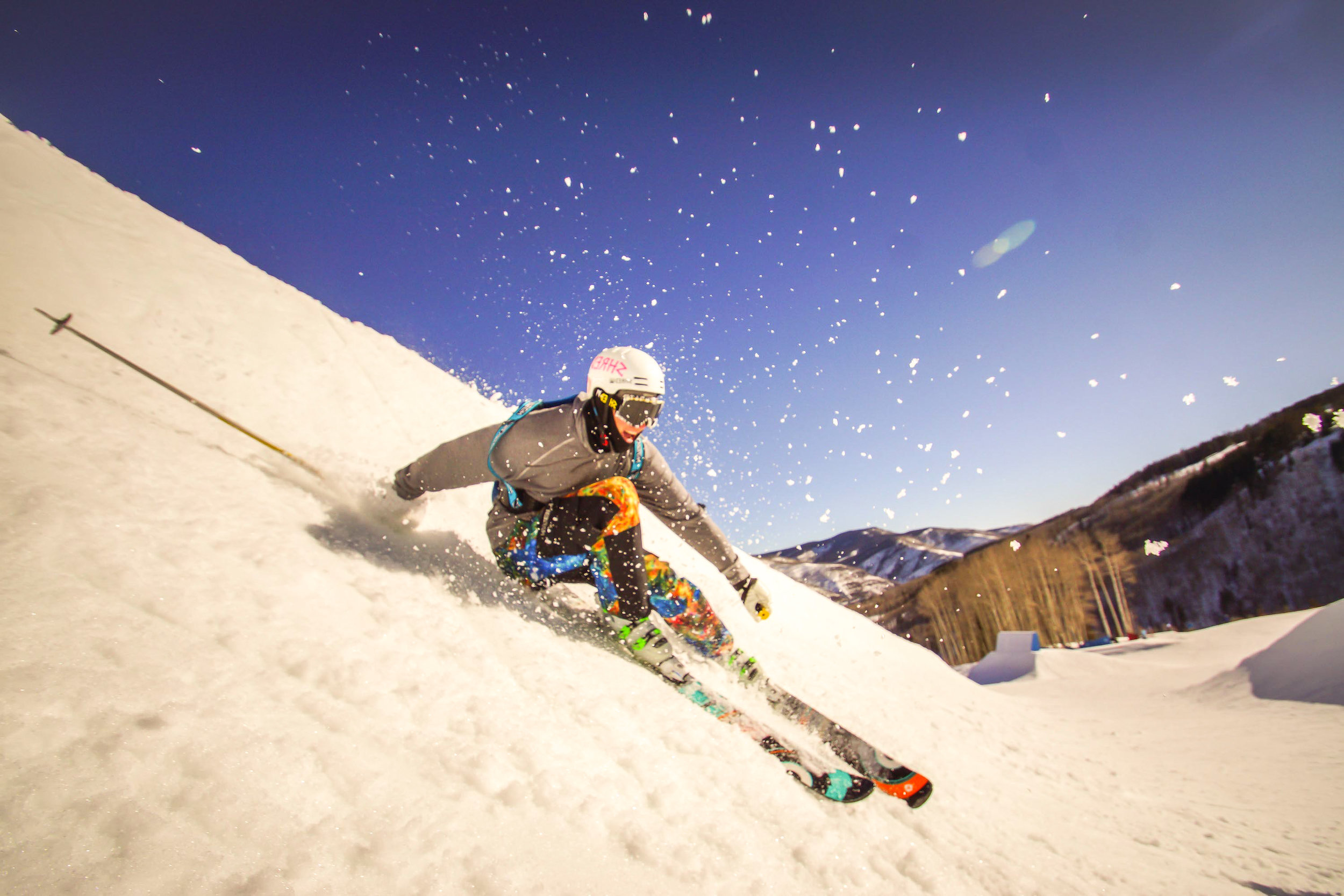 Male Professional Skier Photo