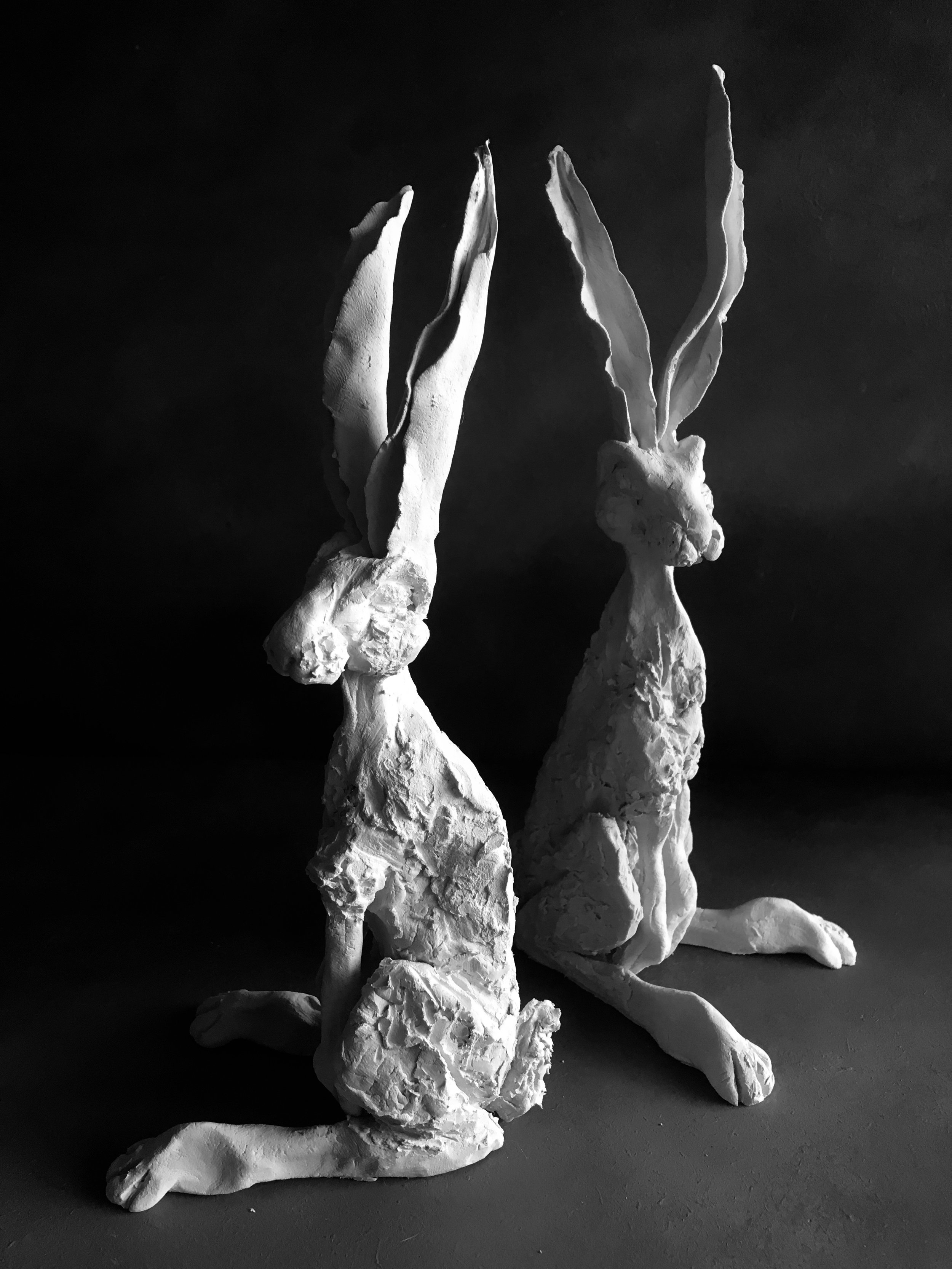Caroline L Porcelain Hares.jpeg