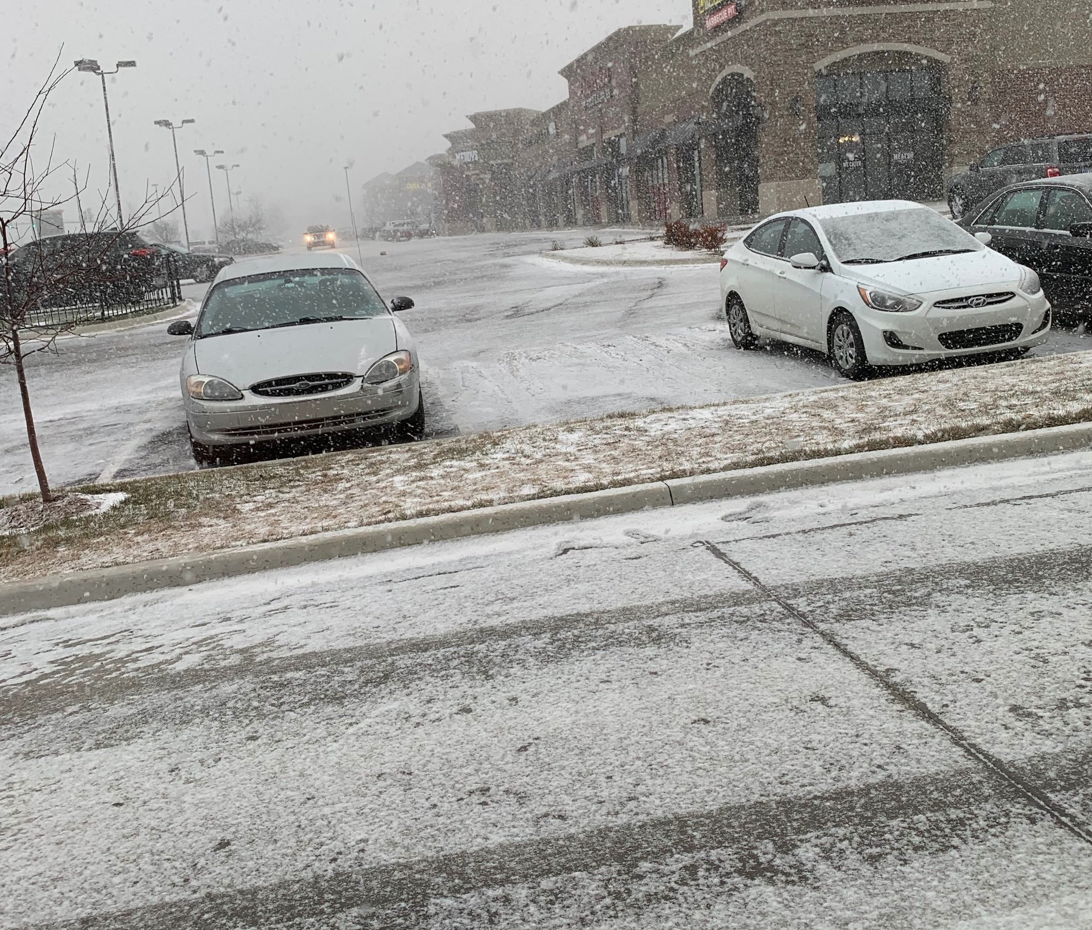 Picture I snapped of the fast-falling snow before the incident.