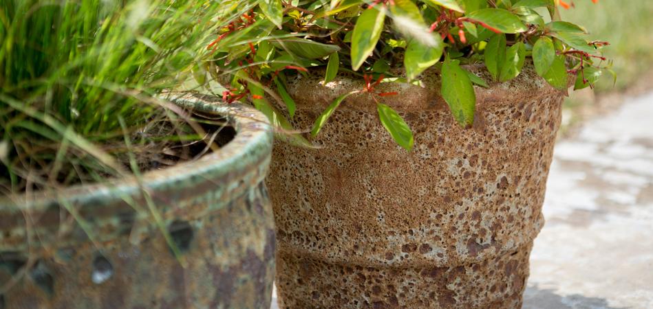 Jacksons Home U0026 Garden