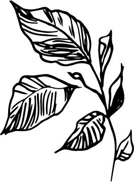flower wip 2.jpg
