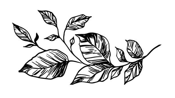 long-flower-wip.jpg