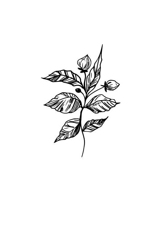 flower1-wip.jpg
