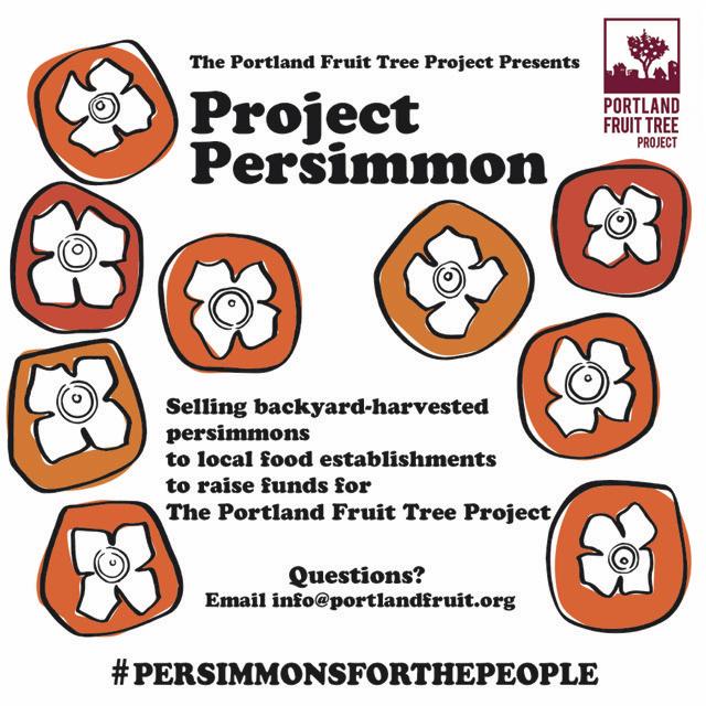 Project Persimmon Flyer w PFTP logo.jpg