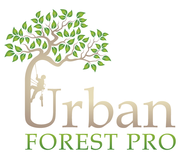 Urban-Forest-Pro-2.png